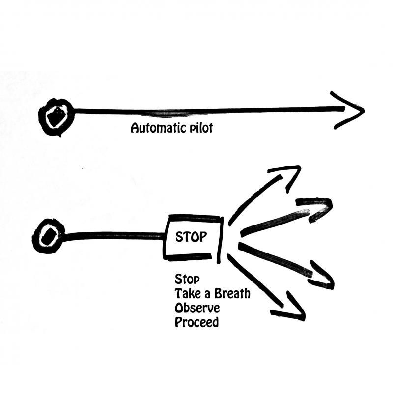 automatische-reactie-bewuste-response
